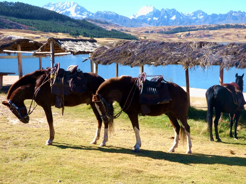 sacred valley horseback ride