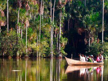 Tambopata Jungle Trips