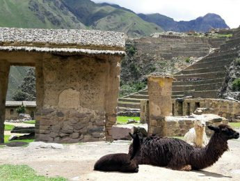Sacred Valley Private Tour